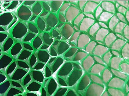 植被防护网